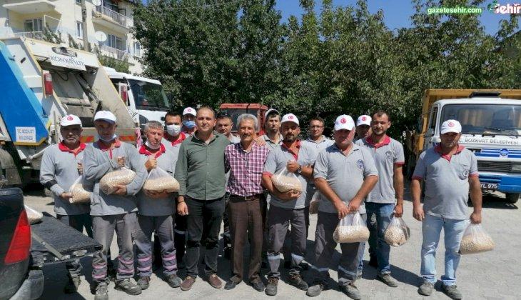 Bozkurt Belediye Başkanı Birsen Çelik'in 14 Mayıs Çiftçiler Günü'nde açıkladığı tarım projesi, ilk ürünleri verdi.