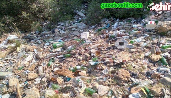 Denizli Büyükşehir Belediyesi, ormanlık alanlarda topyekun temizlik seferberliği başlattı.